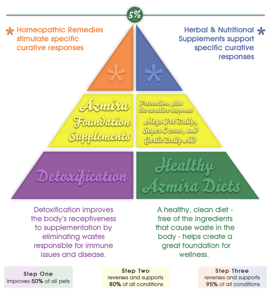 Holistic LifeStyle® Triangle